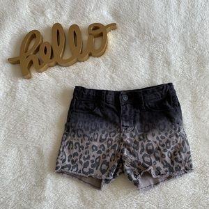 Hudson leopard ombre denim cut of shorts